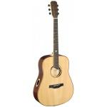 James Neligan ELI-D akustická kytara typu Dreadnought