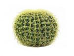 Kulatý zlatý kaktus 37cm