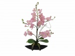 Orchidej aranžmá s květináči růžová 60 cm