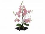 EUROPALMS orchidea dekorance EVA, fialová