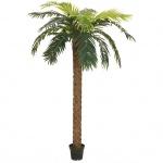 Europalms palma Phoenix deluxe, umělá rostlina, 300cm