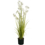 Jasmínová tráva s bílými květy 130 cm