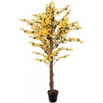 Forsythia se 4 kmeny žlutá 150 cm