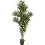 Oleandr růžový 150 cm