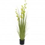 Allium tráva 122 cm
