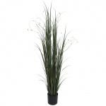 Tmavě zeleno-hnědá tráva 183 cm