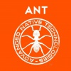 Vypsat zboží značky ANT into music